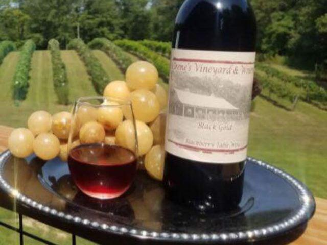 vignoble bouteille et verre de vin rouge sur un plateau avec des fruits irenes vineyard oblong illinois états unis ulocal produits locaux achat local produits du terroir locavore touriste