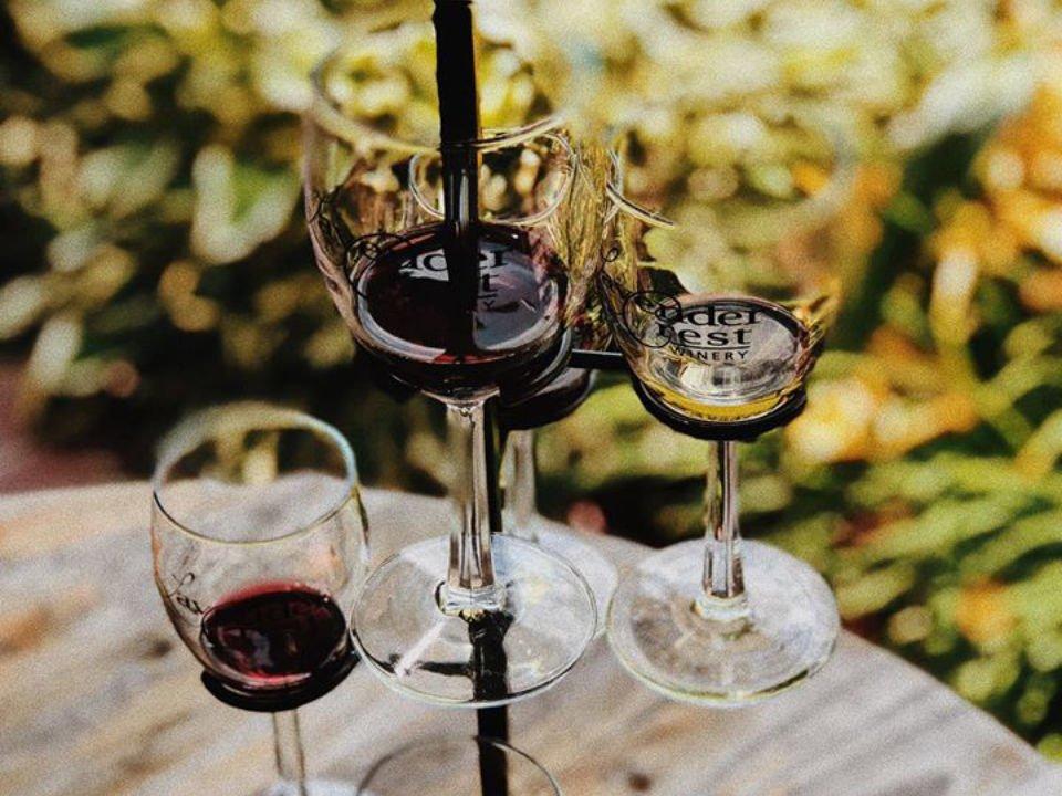vignoble tour à verres de vin pour dégustations lavender crest winery colona illinois états unis ulocal produits locaux achat local produits du terroir locavore touriste