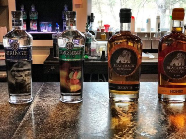 liquor bottles of different flavors of spirits on the tasting bar silverback distillery east stroudsburg pennsylvania united states ulocal local products local purchase local produce locavore tourist