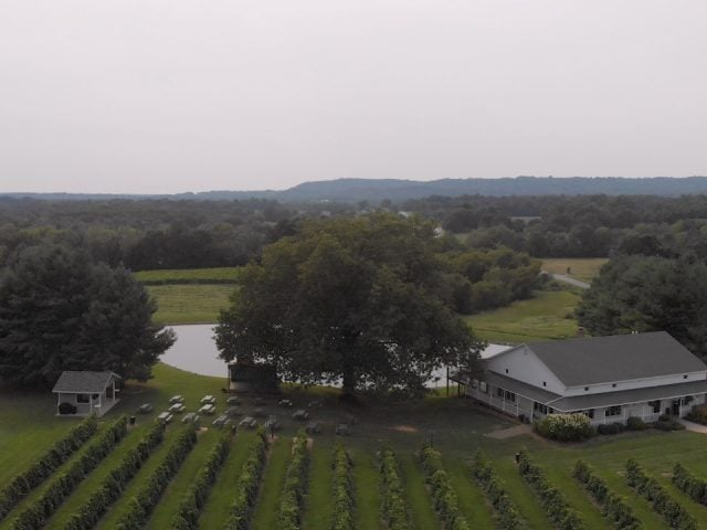vineyards aerial view of the estate with vineyards and a pond with winery starview vineyards cobden illinois united states ulocal local products local purchase local produce locavore tourist