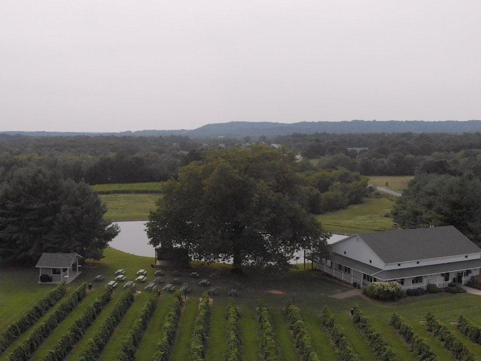 vignoble vue aérienne du domaine avec les vignes et un étang avec établissement vinicole starview vineyards cobden illinois états unis ulocal produits locaux achat local produits du terroir locavore touriste