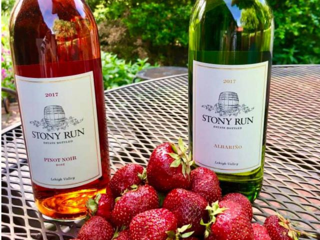 vineyards bottle of pinot noir and white with strawberries on a table in the terrace stony run winery kempton pennsylvania united states ulocal local products local purchase local produce locavore tourist