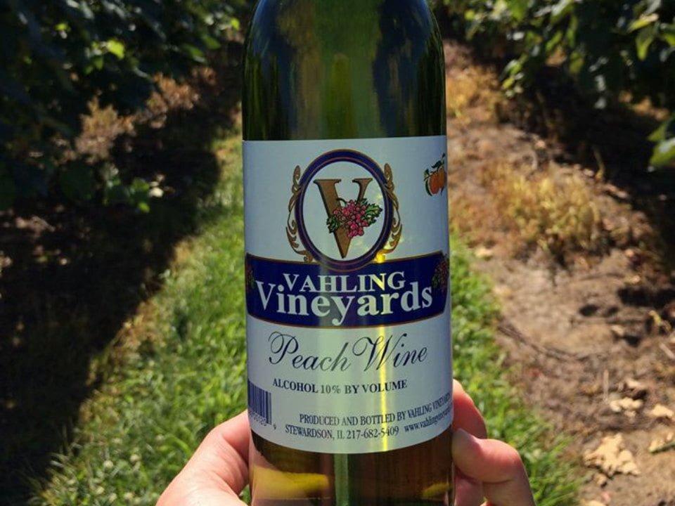 vignoble bouteille de vin dans une main dans les vignes vahling vineyards stewardson illinois états unis ulocal produits locaux achat local produits du terroir locavore touriste