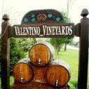 vignoble logo valentino vineyards and winery long grove illinois états unis ulocal produits locaux achat local produits du terroir locavore touriste