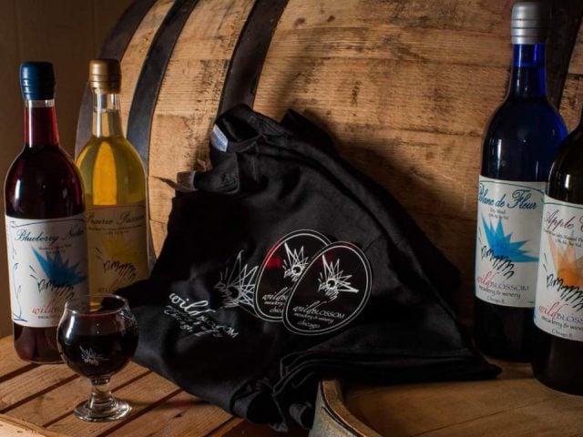vignoble bouteilles de vin de la vinerie avec verre et sacs noirs avec baril de bois wild blossom meadery and winery chicago illinois états unis ulocal produits locaux achat local produits du terroir locavore touriste