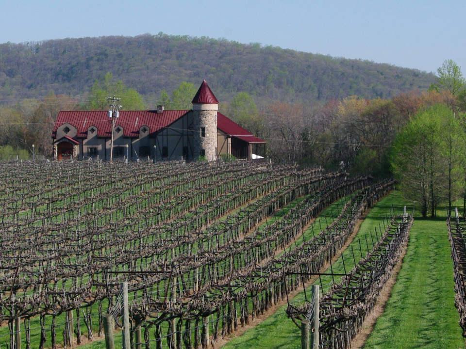 vignoble établissement vinicole style château de pierre au toit bourgogne avec vignes honah lee vineyard gordonsville virginie états unis ulocal produits locaux achat local produits du terroir locavore touriste