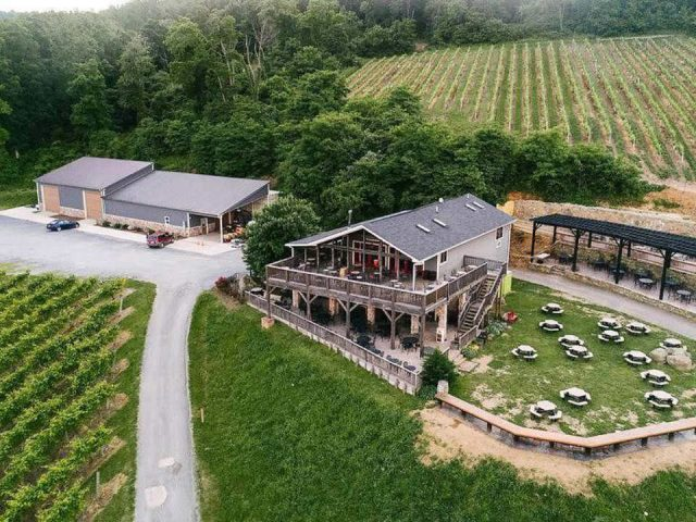 vineyards aerial view of wineries with several terraces and grounds with picnic tables and vineyards bluemont vineyard bluemont virginia united states ulocal local products local purchase local produce locavore tourist