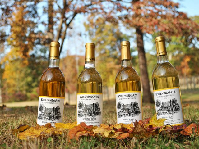 vineyards 4 varied bottles from the vineyard in autumn leaves bodie vineyards powhatan virginia united states ulocal local products local purchase local produce locavore tourist