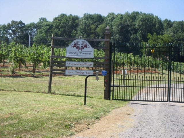 vineyards entrance to the vineyard with signboard and fenced doors with vines burnley vineyards barboursville virginia united states ulocal local products local purchase local produce locavore tourist