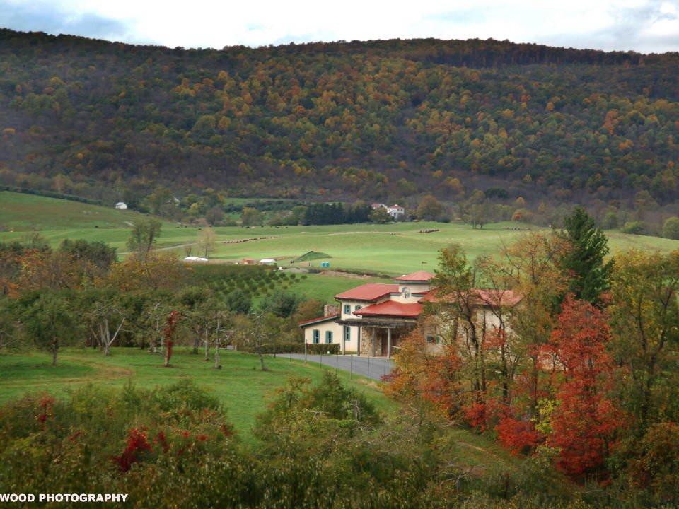 vignoble grand domaine en montagne avec vignes et établissement vinicole en automne chateau obrien at northpoint markham virginie états unis ulocal produits locaux achat local produits du terroir locavore touriste