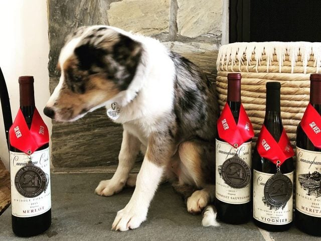 vineyards award winning wine bottles on the edge of the hearth with dog sitting and wicker basket cunningham creek winery palmyra virginia united states ulocal local products local purchase local produce locavore tourist