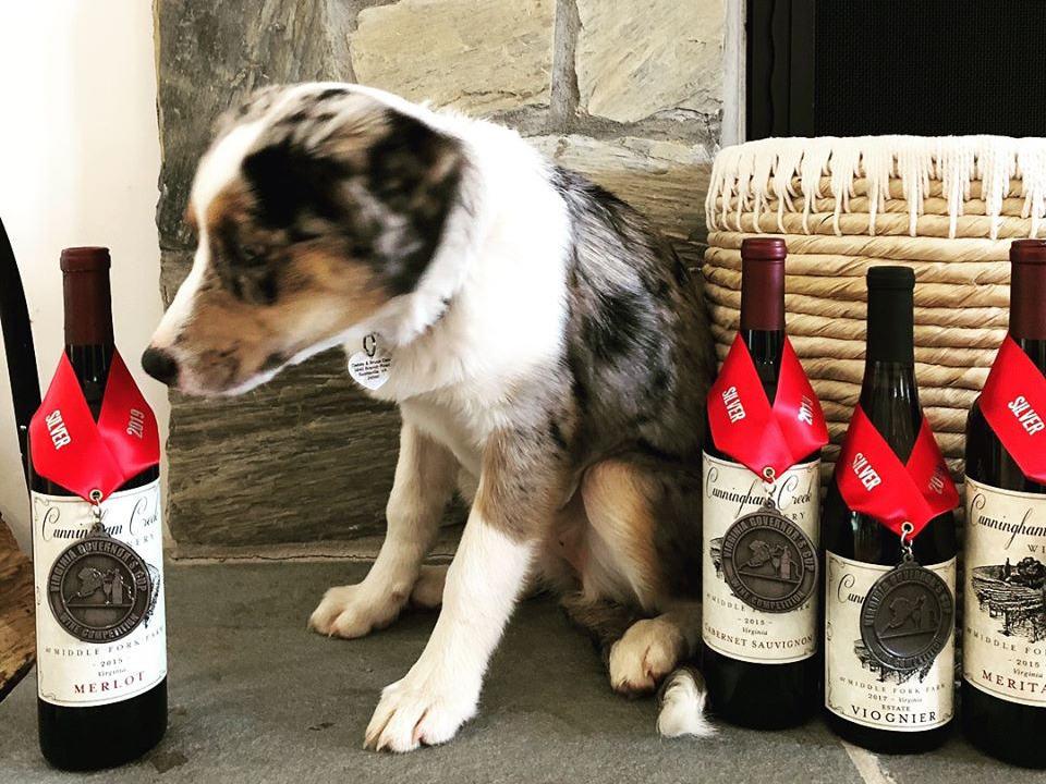 vignoble bouteilles de vin primées sur le bord du foyer avec chien assis et panier en osier cunningham creek winery palmyra virginie états unis ulocal produits locaux achat local produits du terroir locavore touriste