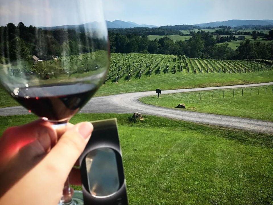 vignoble main qui tient un verre de vin rouge avec vue du domaine et des champs de vignes delaplane cellars delaplane virginie états unis ulocal produits locaux achat local produits du terroir locavore touriste