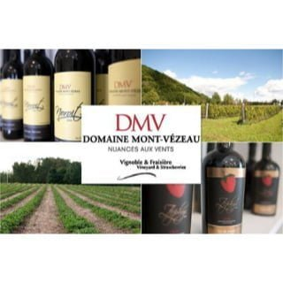 vignoble logo domaine du mont-vezeau ripon quebec canada ulocal produits locaux achat local produits du terroir locavore touriste