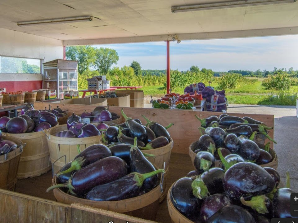 food produce picking produce markets ferme d auteuil kiosque chez vaillancourt laval quebec ulocal local product local purchase