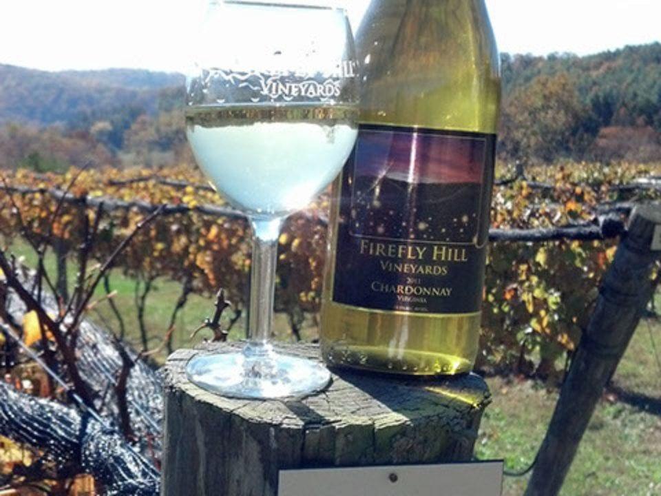 vignoble bouteille et verre de vin blanc sur un poteau de clôture dans les vignes firefly hill vineyards elliston virginie états unis ulocal produits locaux achat local produits du terroir locavore touriste