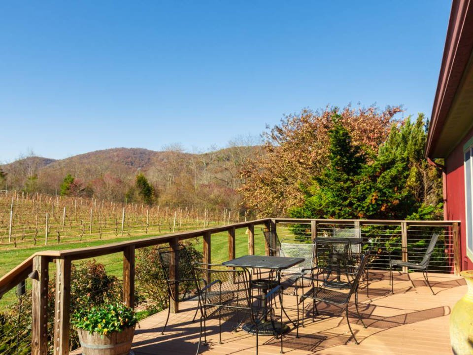 vineyards terrace with tables facing the vines gadino cellars washington virginia united states ulocal local products local purchase local produce locavore tourist