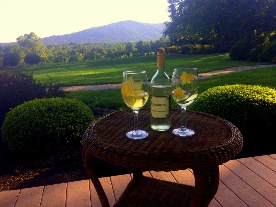 vineyards bottle and 2 glasses of white wine with view on the domain and mountain kilaurwen winery stanardsville virginia united states ulocal local products local purchase local produce locavore tourist