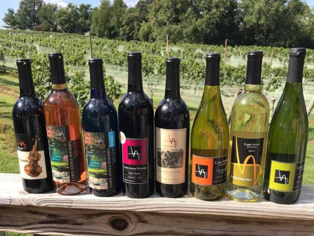 vineyards assortment of bottles of wine on the patio guard with vines lake anna winery spotsylvania courthouse virginia united states ulocal local products local purchase local produce locavore tourist