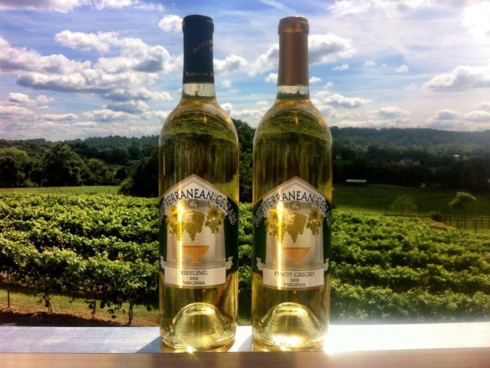 vignoble 2 bouteilles de vin blanc sur le garde du patio avec les vignes en arrière plan mediterranean cellars warrenton virginie états unis ulocal produits locaux achat local produits du terroir locavore touriste