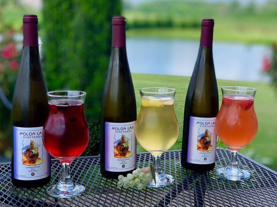 vineyards assortment of 3 bottles of fruit wine and 3 glasses on an outdoor table molon lave vineyards warrenton virginia united states ulocal local products local purchase local produce locavore tourist