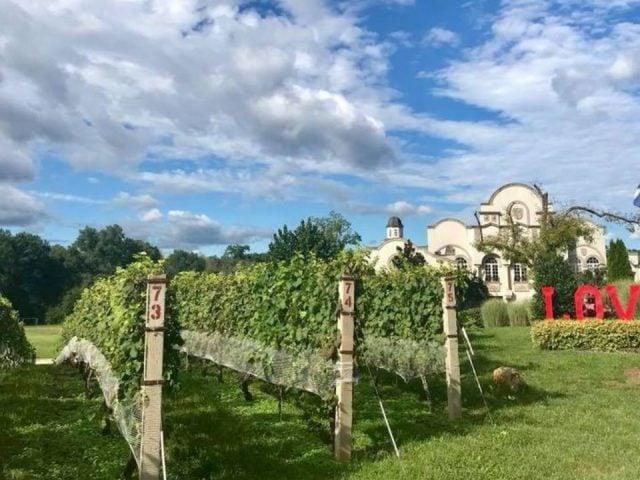vignoble établissement vinicole luxueux de style portugais avec vignes morais vineyards and winery bealeton virginie états unis ulocal produits locaux achat local produits du terroir locavore touriste