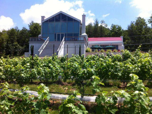 vignoble établissement vinicole avec grandes vitrines et vignes moss vineyards nortonsville virginie états unis ulocal produits locaux achat local produits du terroir locavore touriste