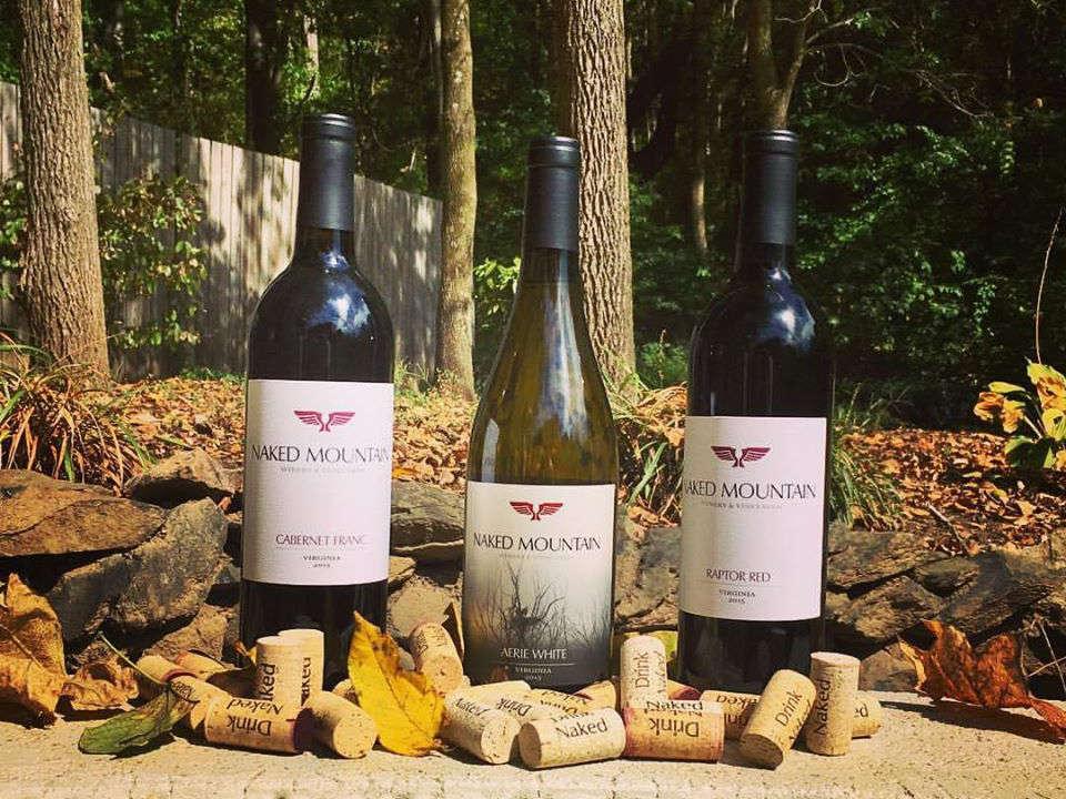 vignoble assortiment de 3 bouteilles de vin en plein-air avec bouchons de liège naked mountain vineyard markham virginie états unis ulocal produits locaux achat local produits du terroir locavore touriste