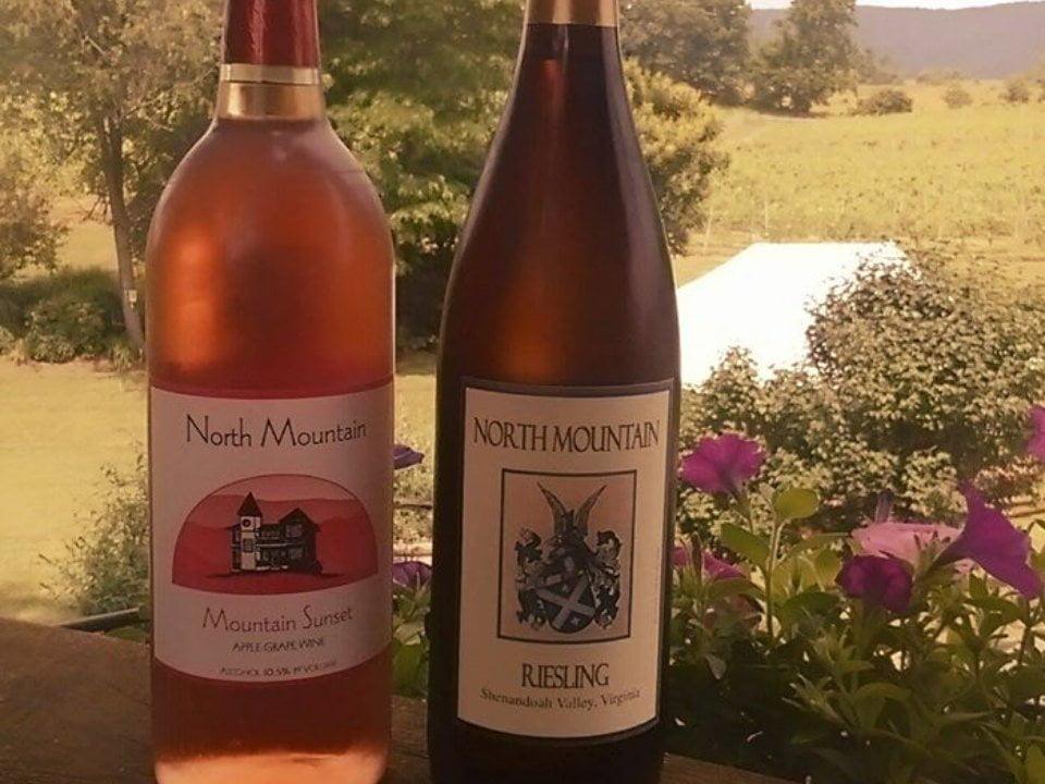 vignoble 2 bouteilles de vin sur le garde de la terrasse avec vue du domaine north mountain vineyards maurertown virginie états unis ulocal produits locaux achat local produits du terroir locavore touriste