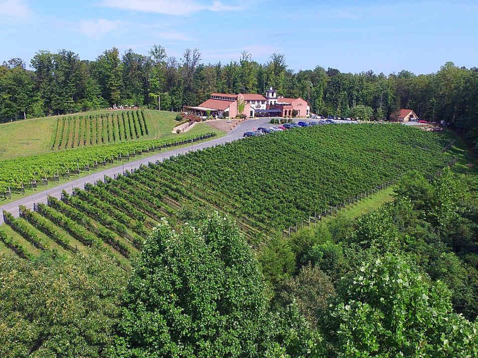 vignoble grand domaine vinicole avec établissement style toscan et ses vignes potomac point vineyard and winery stafford courthouse virginie états unis ulocal produits locaux achat local produits du terroir locavore touriste