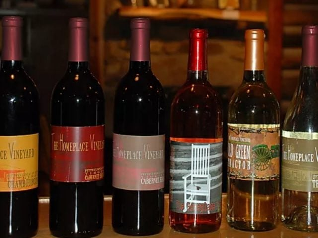 vineyards assortment of 6 bottles of wine the homeplace vineyard chatham virginia united states ulocal local products local purchase local produce locavore tourist