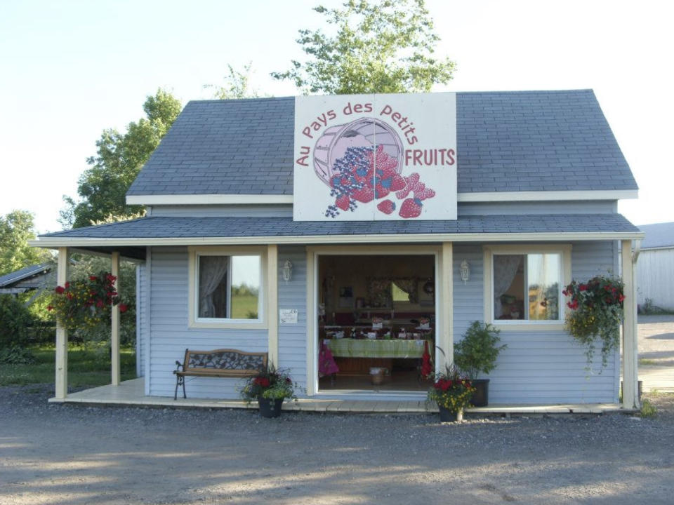 food produce picking family farmers au pays des petits fruits mirabel quebec ulocal local product local purchase