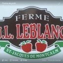 food produce picking family farmers ferme j l leblanc st-jacques quebec ulocal local product local purchase