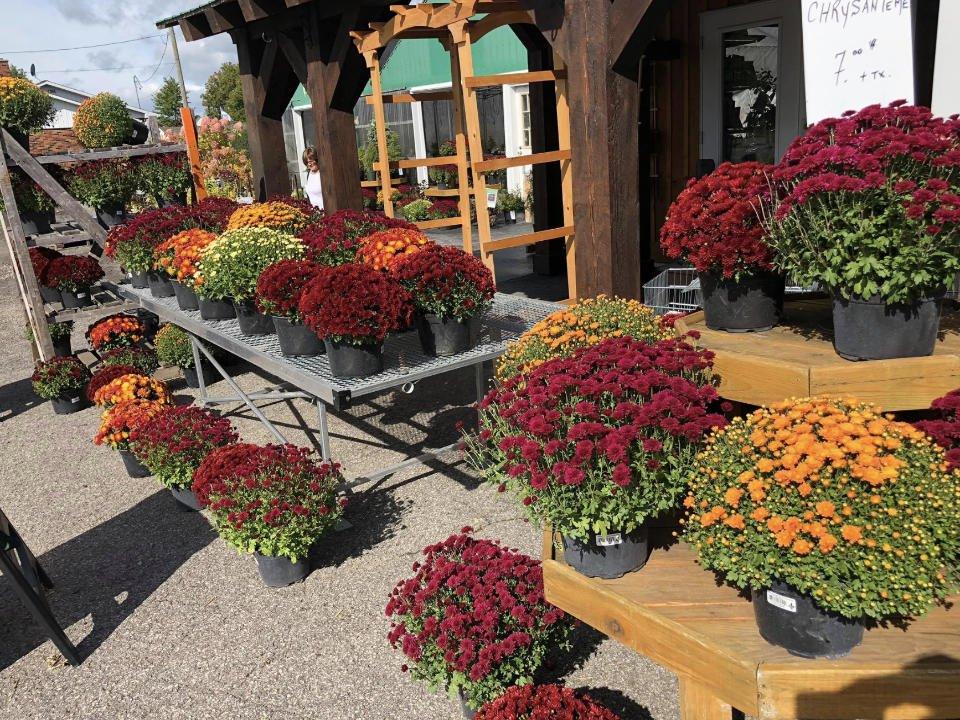 alimentation fermiers de famille marche fruits et legumes boutique le jardin de lachute lachute quebec ulocal produit local achat local