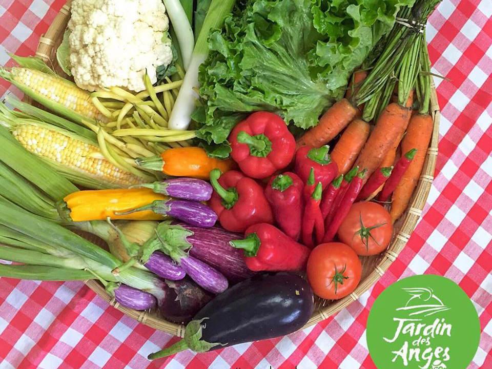 produce markets fruit and vegetable basket le jardin des anges laval quebec canada ulocal local products local purchase local produce locavore tourist
