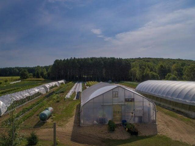 alimentation fermiers de famille produits biologiques les jardins bio du solstice mont laurier quebec ulocal produit local achat local