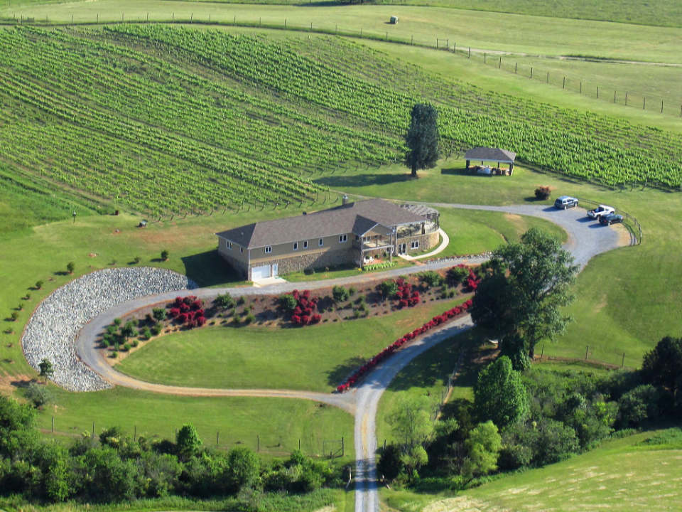 vineyards estate with winery and vineyard ramulose ridge vineyards moneta virginia united states ulocal local products local purchase local produce locavore tourist