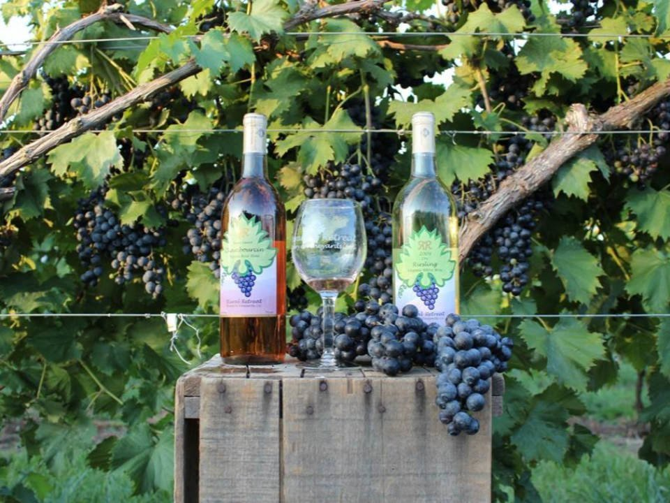 vineyards bottles and glasse of wine from the vines rural retreat winery and vineyards rural retreat virginia united states ulocal local products local purchase local produce locavore tourist