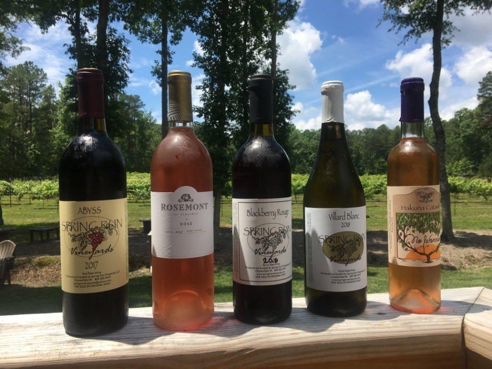 vineyards bottles of wine spring run vineyards chesterfield virginia united states ulocal local products local purchase local produce locavore tourist