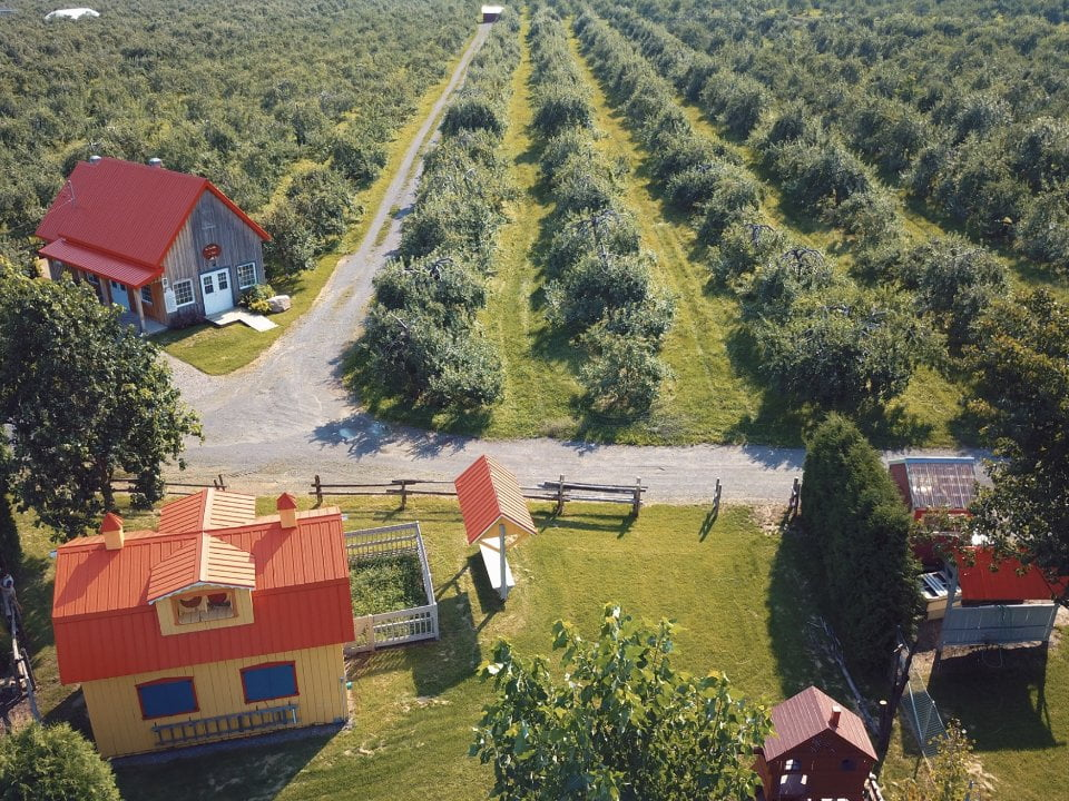 food produce picking family farmers verger lavallee saint joseph du lac quebec ulocal local product local purchase