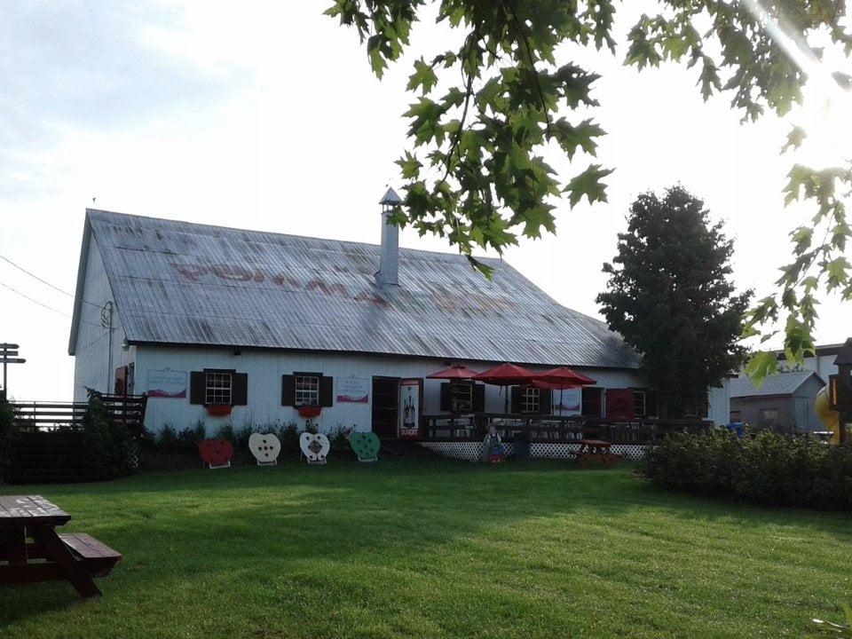 alimentation autocueillette fermiers de famille verger la tete dans les pommes pommalefun saint joseph du lac quebec ulocal produit local achat local