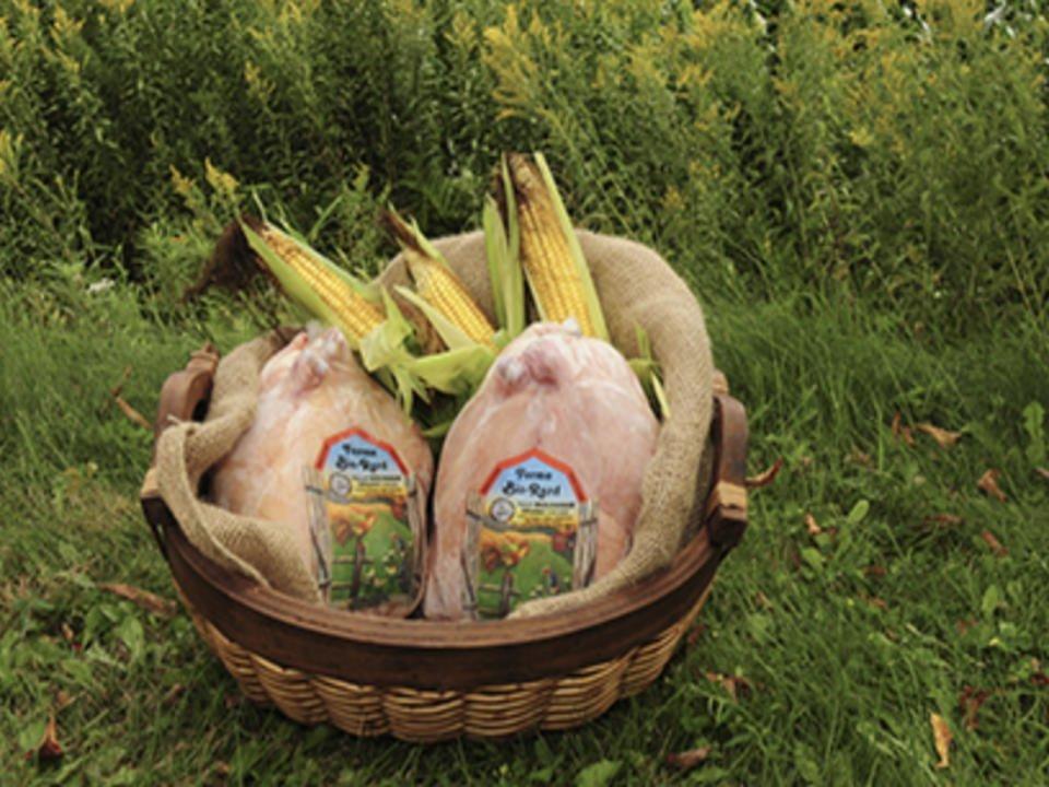alimentation fermiers de famille produits biologiques ferme bio rard ange gardien quebec ulocal produit local achat local