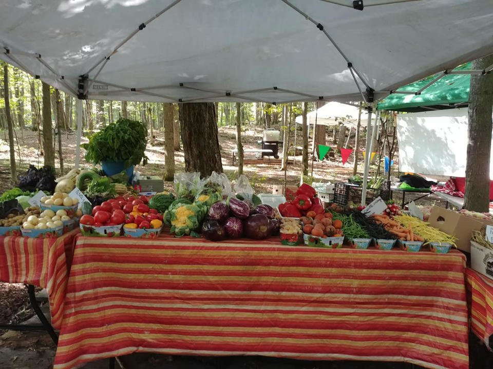 marché de fruits et légumes écologiques poulets oeufs Les jardins de Stéphanie-Lorraine Nadon Saint-Lin-Laurentides Québec Ulocal produit local achat local