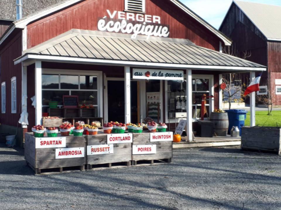 Verger autocueillette pomme cidrerie boutique Au coeur de la pomme / Vinaigrerie Gingras Frelighsburg Ulocal produit local achat local produits du terroir